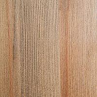 Core Beech - oil 3075